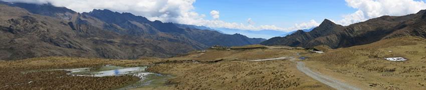 camino-inca-jungle-3-d1