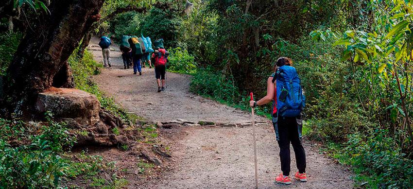 Inca Jungle Machu Picchu Trail